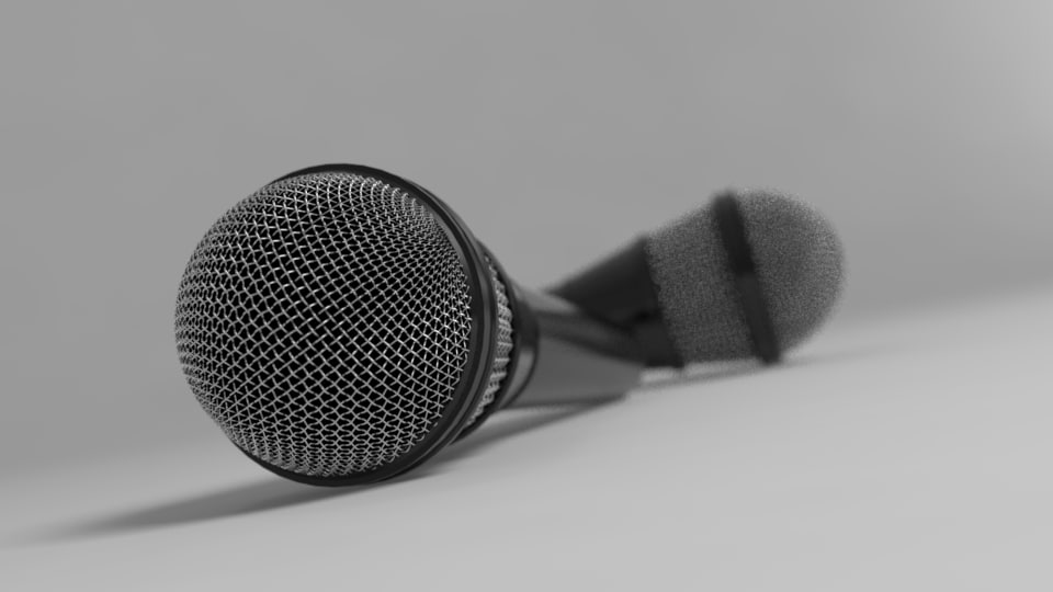 3d mic model