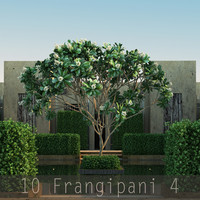 trunk flower 10 tree 3d max