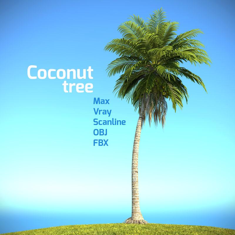 realistic coconut palm tree 3d max