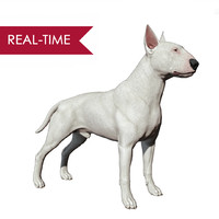 bull terrier real-time real time 3d model