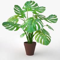 monstera plant fbx