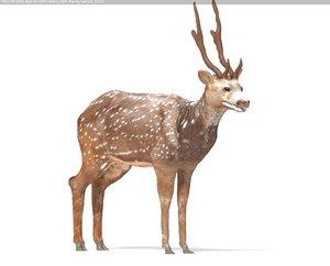 3d spotted deer