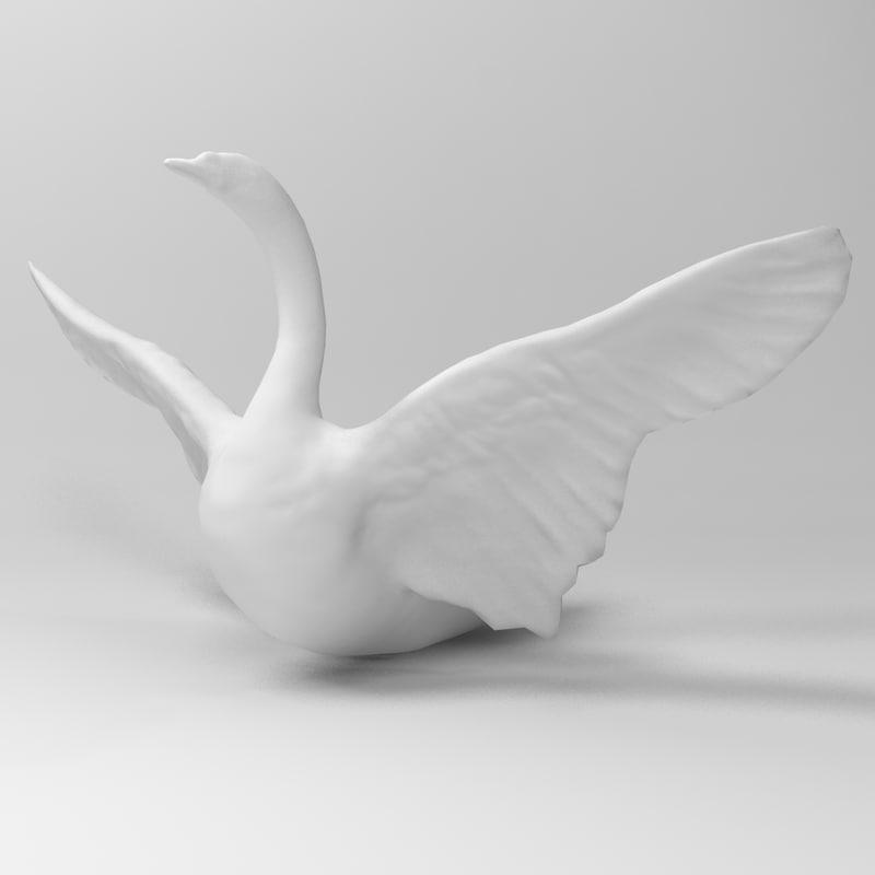 swan sitting water 3d model