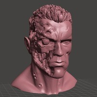 Terminator T800 like head for 3dPrinting