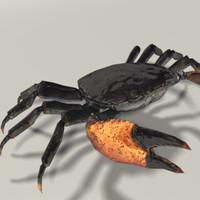 animation crab max