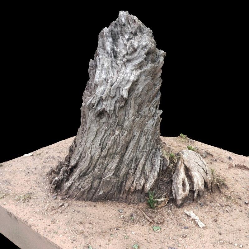 old tree stump obj