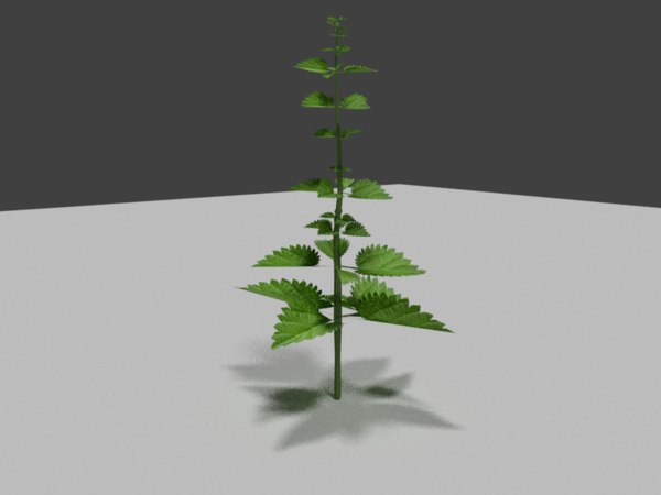3d model stinging nettle