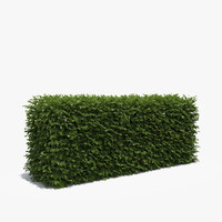 boxwood hedge box 3d obj