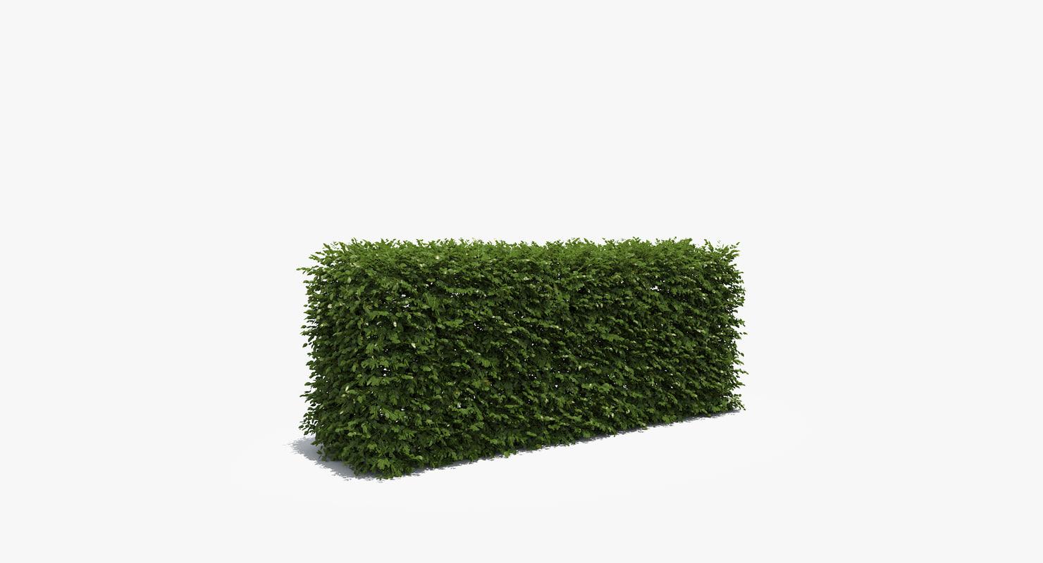 boxwood hedge box 3d obj