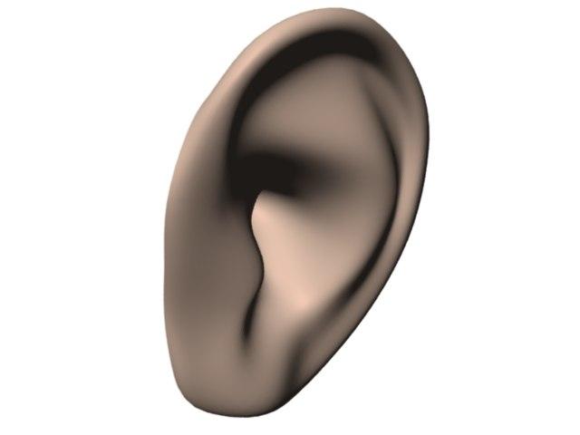 human ear ma