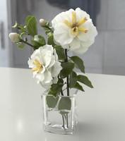 3d rose white model