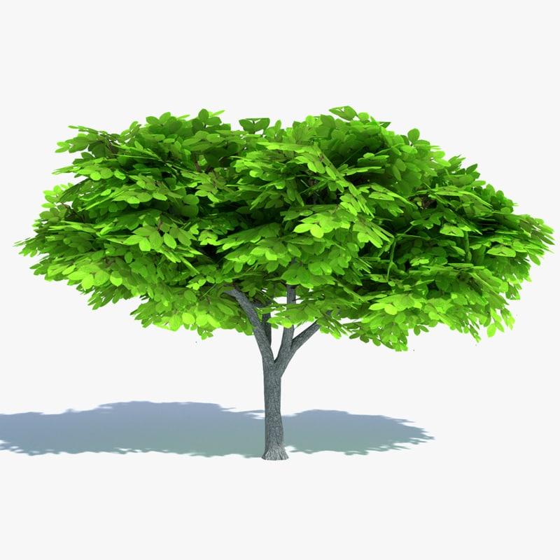 cartoon elm tree 3ds