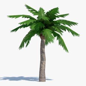 3d cartoon palm tree model