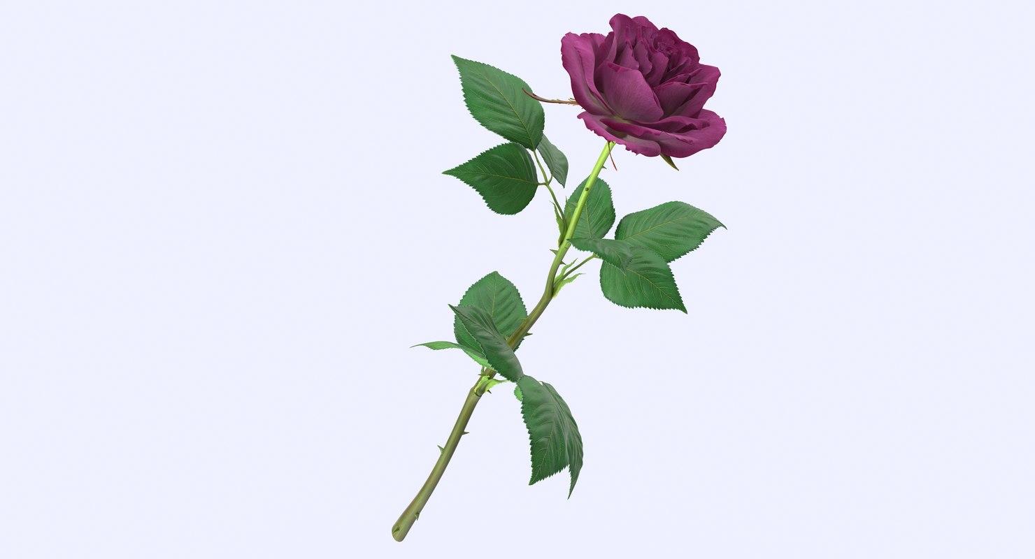 obj rose modeled leaf