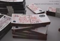 3d model singapore dollars