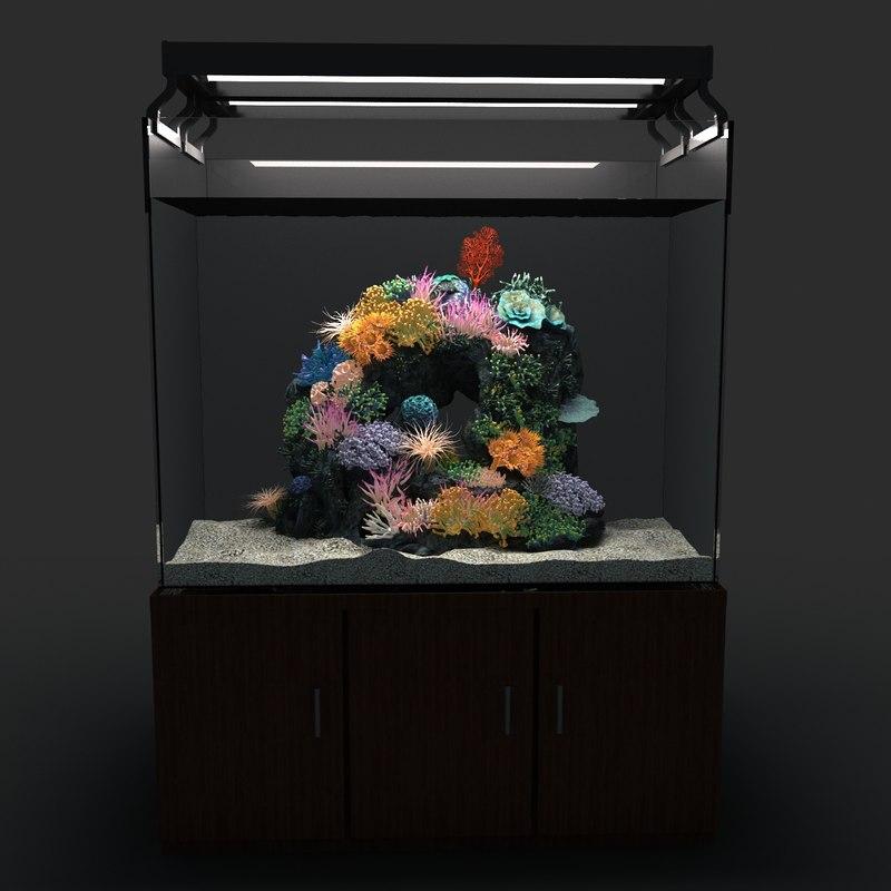 marine aquarium 01 3d model