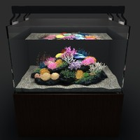 3d marine aquarium 02