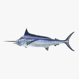 3d blue marlin