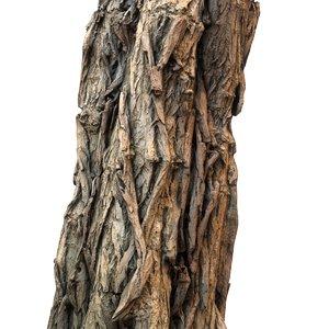 scanned tree bark obj