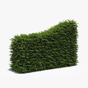 boxwood hedge transition 3d max