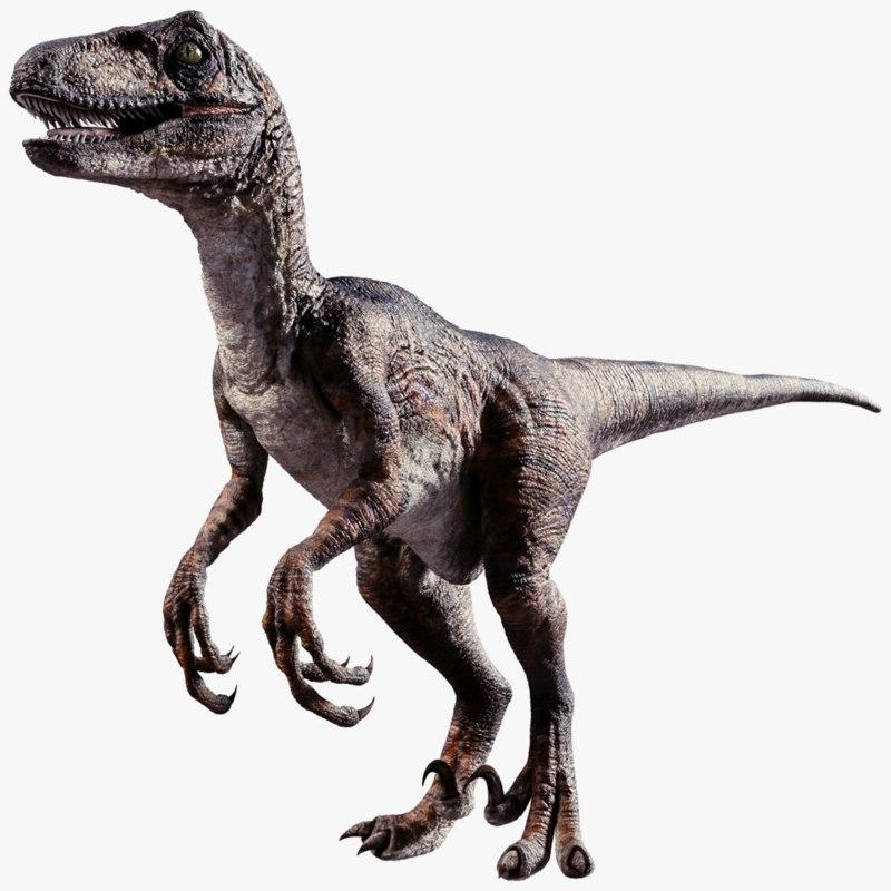 Raptor Dinosaur 3d Obj