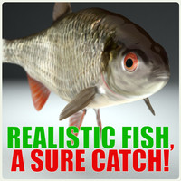 Hires roach-fish