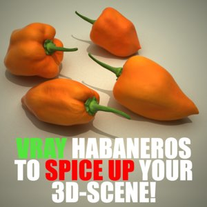 habanero chili pepper 3d 3ds