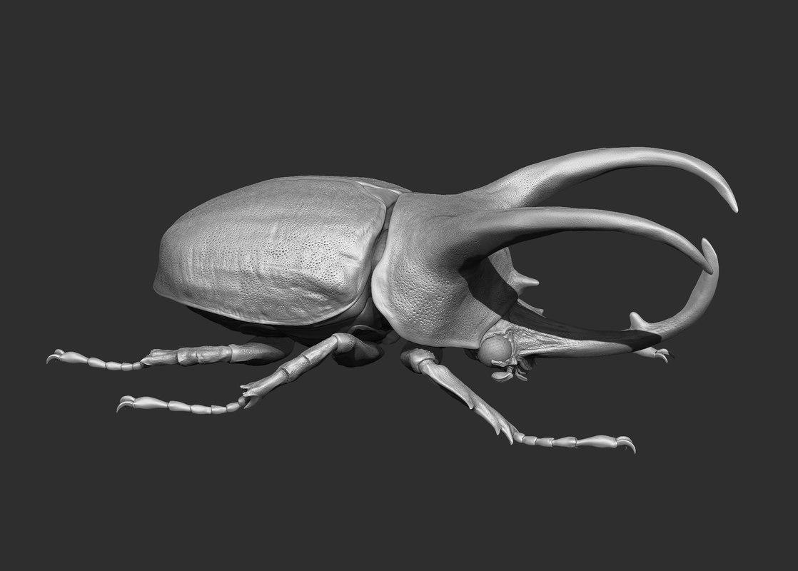 atlas beetle obj