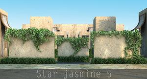 star jasmine 3d model