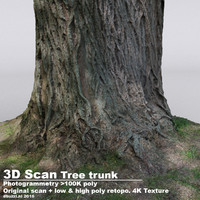DBuzzi 3D Scan 5 Tree Trunks