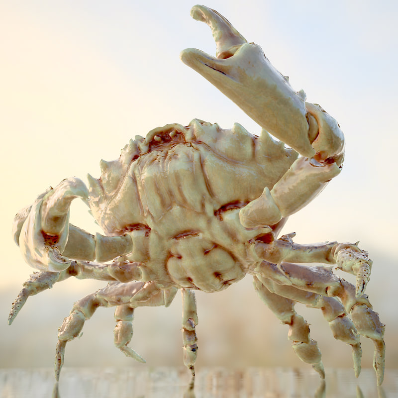 3d model of alien crab rigged