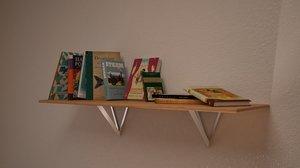 modern shelf books max