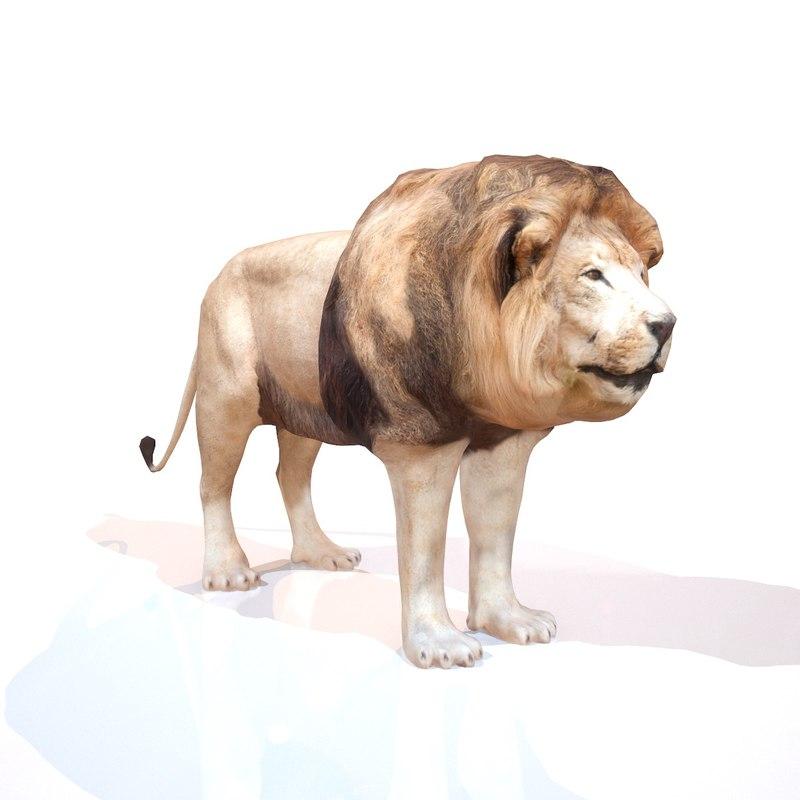 lion 3d model