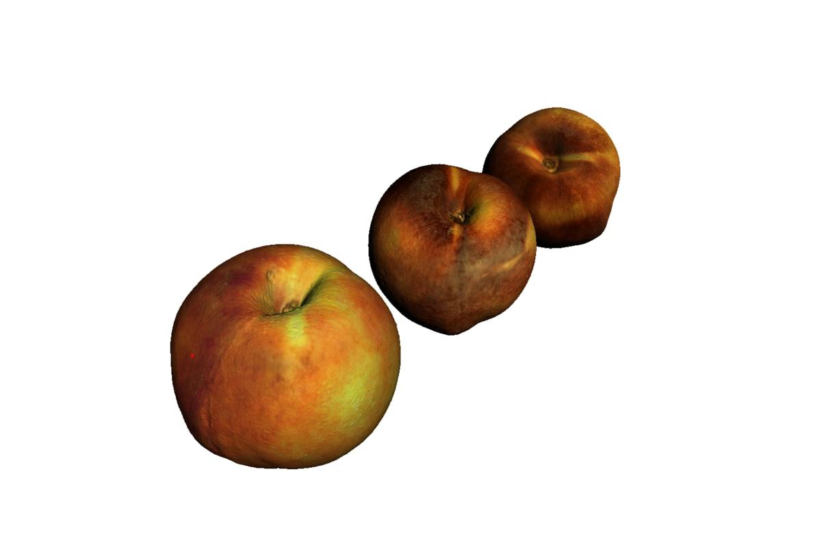 3d model peach printing