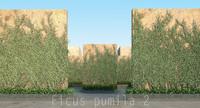 3d model 2 plant tree