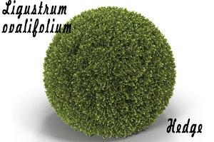 hedge sphere 3d model