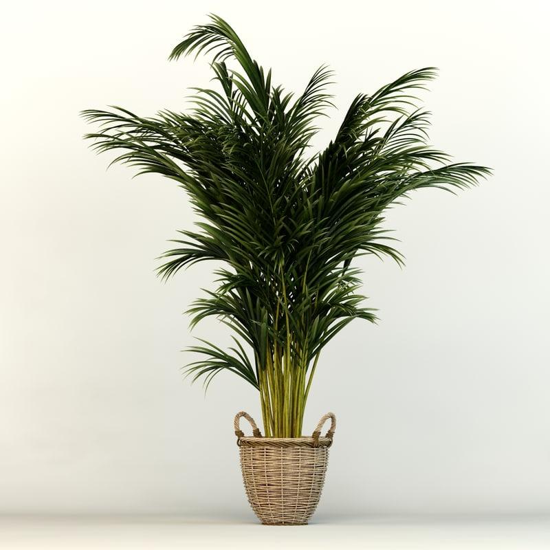 3ds plants office