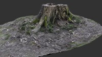 Tree Stump Scan