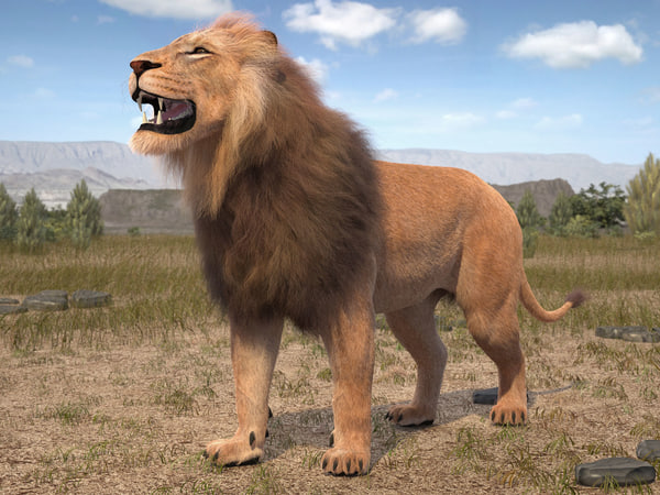 lion king hair fur 3d model