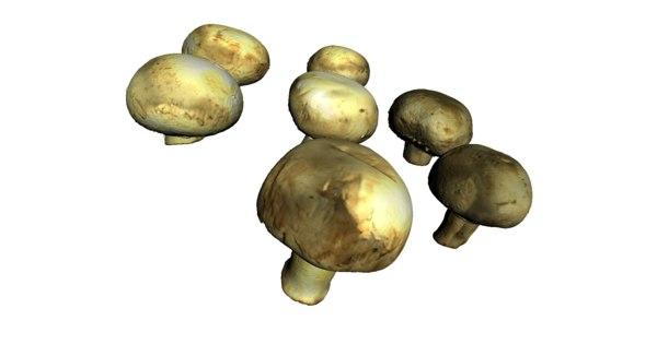 champignon mushrooms 3ds