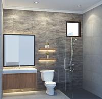 Toilet (Seat)