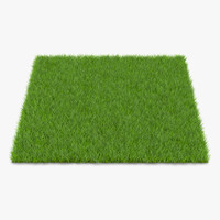 3d fescue grass model