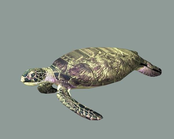 turtle blend