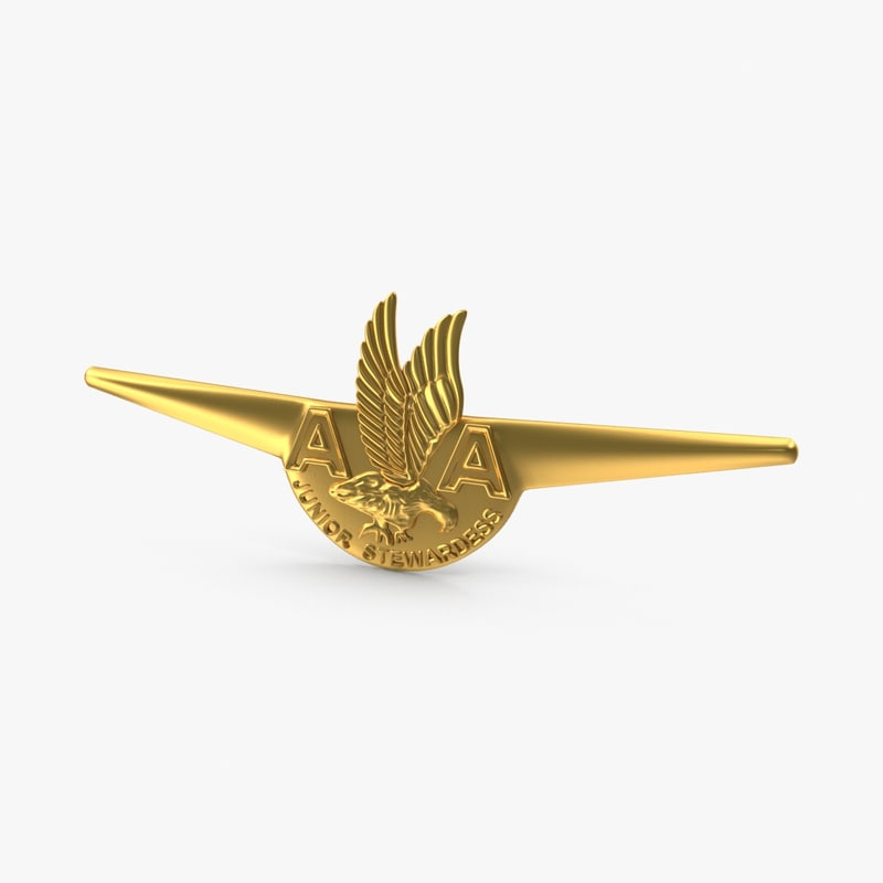 american airlines wings badge 3d max
