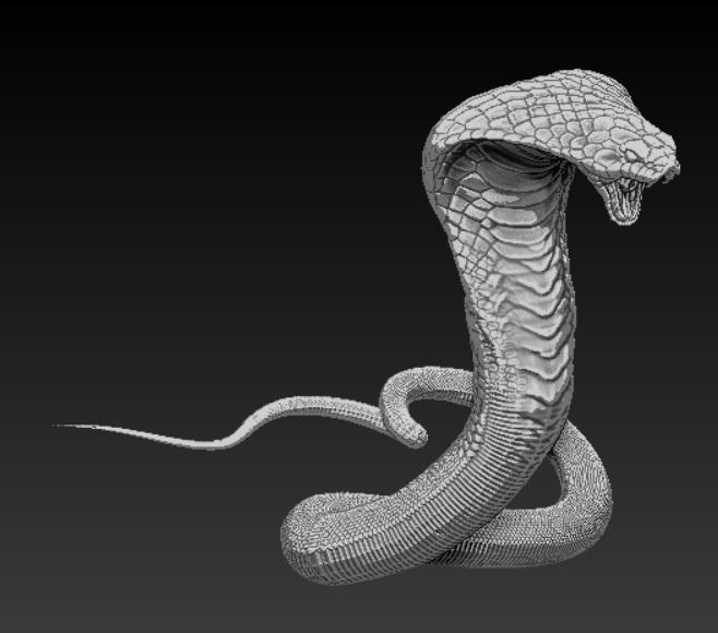 solid cobra 3d model