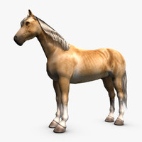 palomino horse 3d max