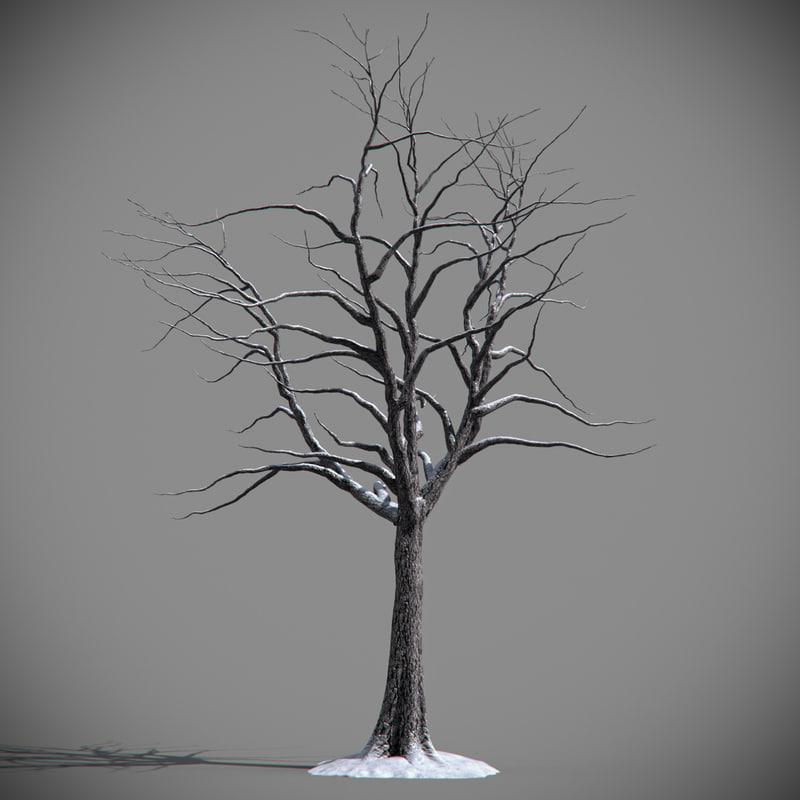 max frozen tree snow