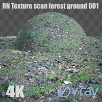 rn texture scan forest ground 001