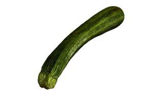 zucchini printing 3d obj