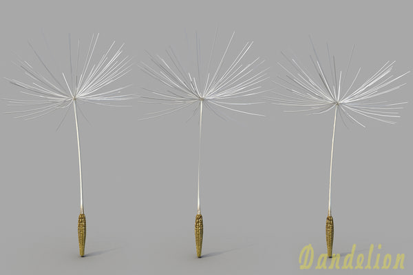 3d dandelion model